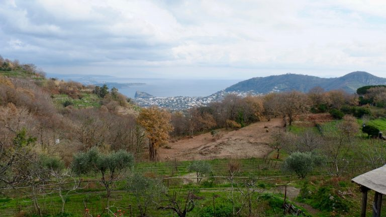A day of trekking in Ischia inspired by Patience Gray